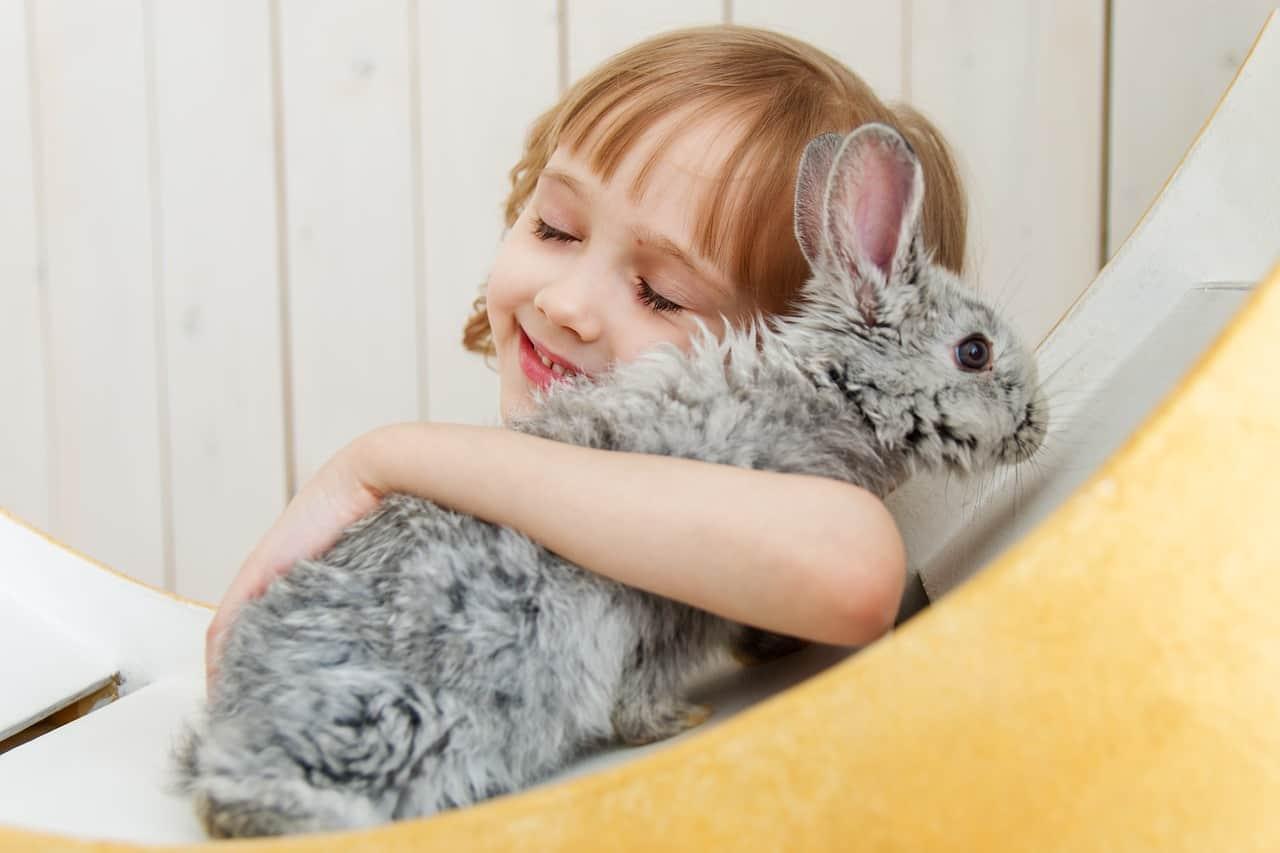 Állattartó kötelezettségei